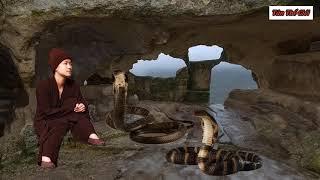 Góa phụ 30 tuổi xinh đẹp lên núi đi tu và câu chuyện rùng rợn cặp rắn thầntrên núi cấm  TÂN THẾ GIỚI