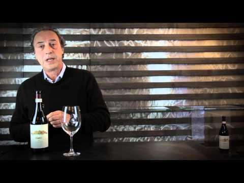 Wine Tasting - Vietti - Barolo Rocche 2009