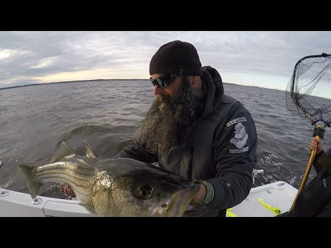 Chunking for Striped Bass - NY,NJ- TEAM OLD SCHOOL- 2013