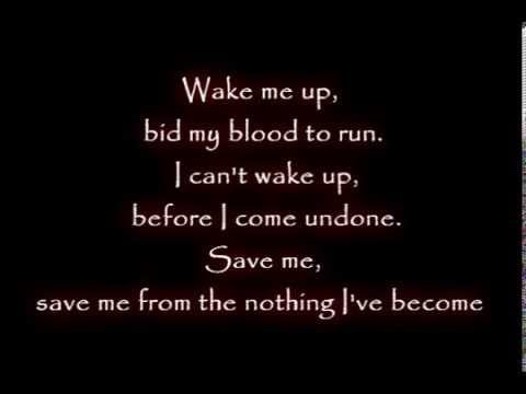 Evanescence   Amy Lee  Wake Me Up Inside Lyrics video