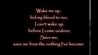 Evanescence   Amy Lee  Wake me up Inside Lyrics
