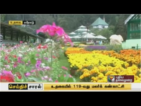 Seithi Saral Morning (11/05/2015)