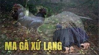 Chuyện kỳ bí ở Việt Nam: Rùng mình nghe chuyện Ma Gà xứ Lạng