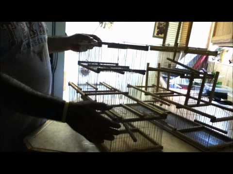trampa para canarios o pajaros