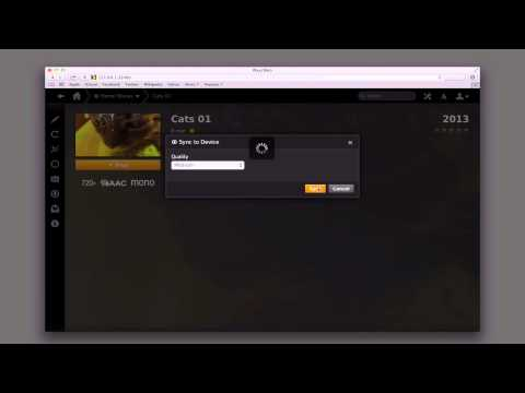 Hosted PLEX Media Server Part 6: PLEX Pass