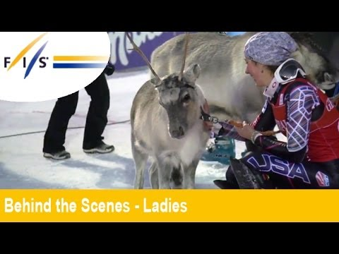 Mikaela Shiffrin Wins A Reindeer in Levi - Behind the Scenes