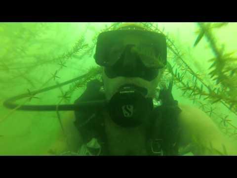Diving Lake Belton