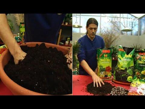 Bricoman a jardiner a el sustrato composici n y tipos - Bricomania jardineria ...
