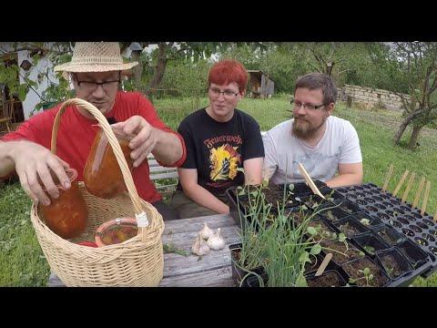 Unwetter In Deutschland - The Day After: Zerstörten Garten Wieder Aufbauen.