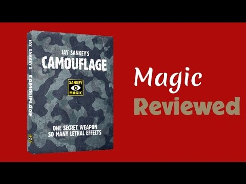 Jay Sankey: Camouflage Review