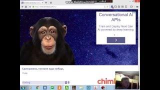 Скачать игру чат бот обезьяна
