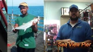 Topsail Fishing Report 7-15-2013