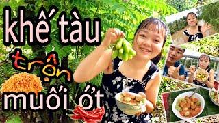 Thử Thách Ăn 30 Trái Khế Tàu Trộn Muối Ớt Cùng Em Gái Miền Tây Và Cái Kết...| Miền Tây Vlogs Tập 239
