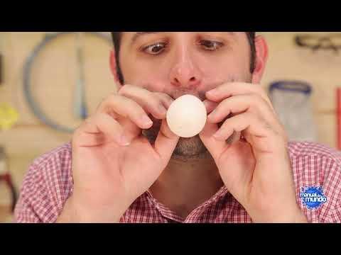 Como fazer um ovo dobrável (experiência de Química e de Biologia)