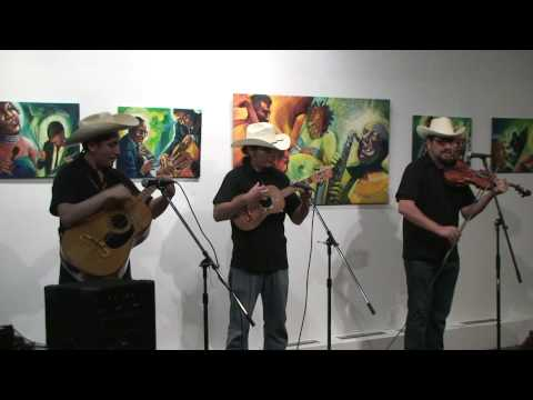 "Los Camaleones perform ""El fandanguito"