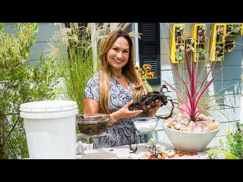Ocean Treasures that Support your Garden with Shirley Bovshow