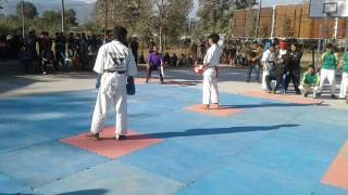 Kyokushin karate - power of Low kicks