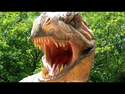 New T. Rex Species Discovered