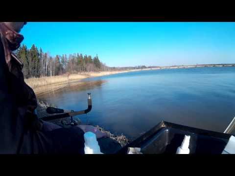 платная рыбалка в сергеевичах