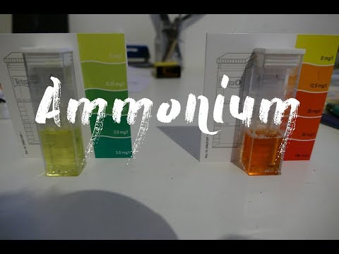 Ammonium zu hoch im Aquaponik System