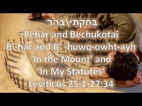 Torah Portions: Behar and Bechukkotai