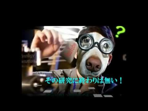 anidoor Technology ̤���ô���ʥΥƥ��Υ?����judge��.wmv