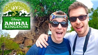 DISNEY WORLD'S ANIMAL KINGDOM 🦁🐗🐲 - Vlog USA