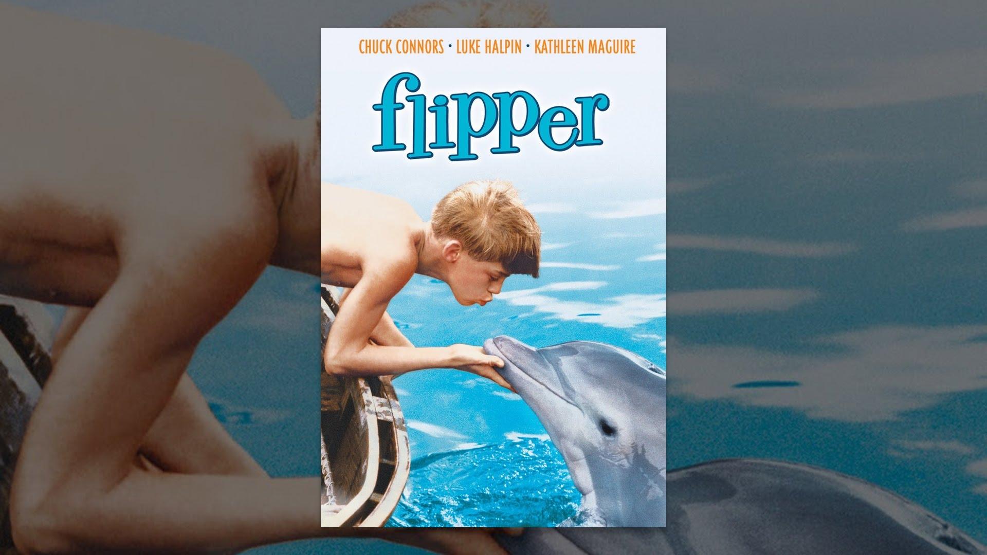 Flipper 1963 Youtube