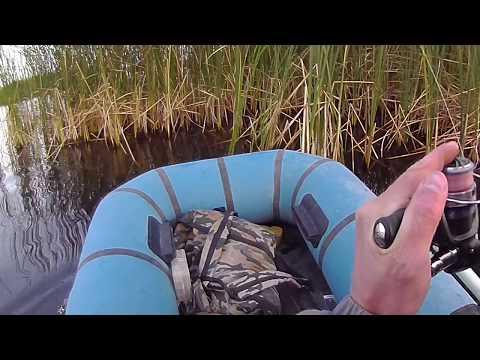 музыка про рыбалка поплавок и червячок