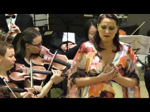 Беллини, Винченцо - Восемь симфоний для оркестра
