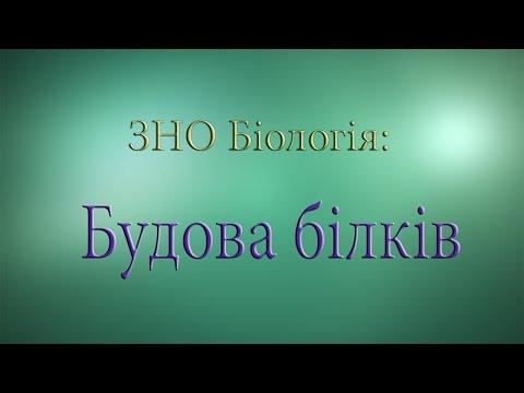 ЗНО Біологія  Будова білків