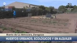 Huertos ecológicos en Zaragoza