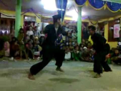Carok Merak Hitam Sampang Madura video