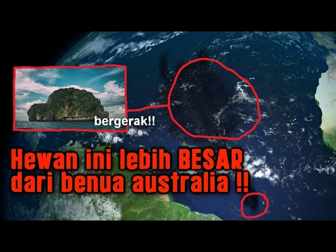Episode 23 - Mistery SCP 169 Dengan FLAT EARTH
