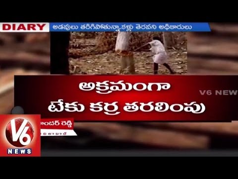 Special Report on Forest endangered with deforestation by smugglers   Adilabad - Reporter's Diary
