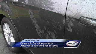 Police searching for person who sprayed acid on cars at local dealership