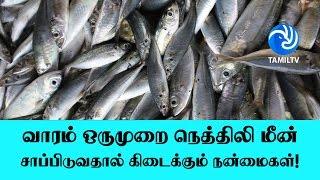 வாரம் ஒருமுறை நெத்திலி மீன் சாப்பிடுவதால் கிடைக்கும் நன்மைகள்! – Tamil TV