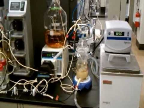 conversion of t amyl alcohol to t amyl N-amyl alcohol produced by basic hydrolysis of n-amyl acetate with 18o-enriched water does not contain 18o (12)  (1−10% conversion at equilibrium) with.