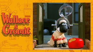 Shopper 13 - Cracking Contraptions - Wallace and Gromit