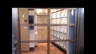canary breeding room