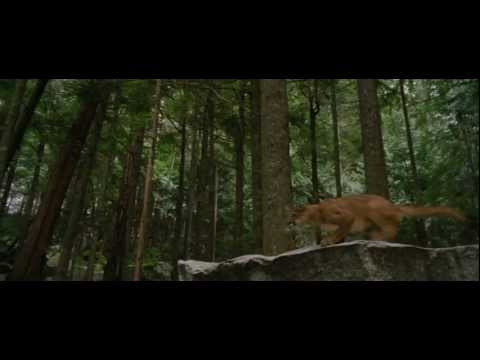 The Twilight Saga: Breaking Dawn - Part 2 Trailer #2