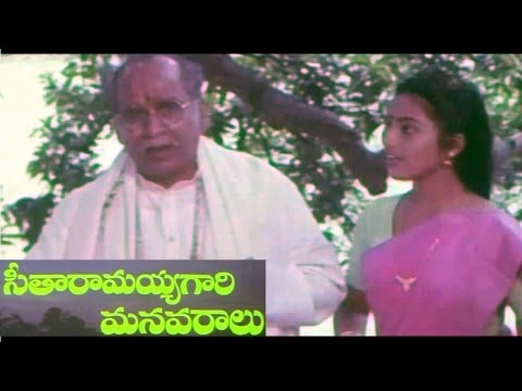 Seetharamaiah Gari Manavaralu Full Length Telugu Movie || DVD...
