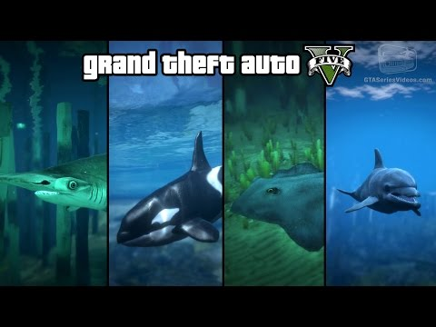 GTA 5 - Play as a Fish (Shark, Dolphin, Killer Whale, Stingray & more) [PS4 & Xbox One]