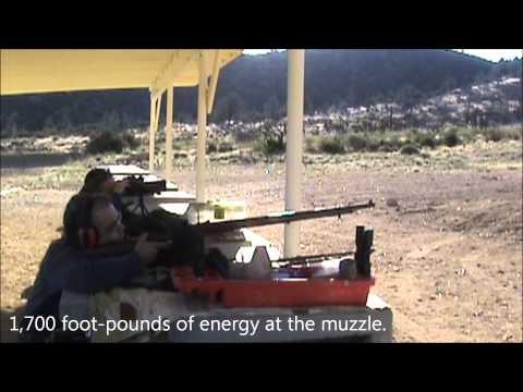 .451 caliber Henry Volunteer target rifle at 650 yards