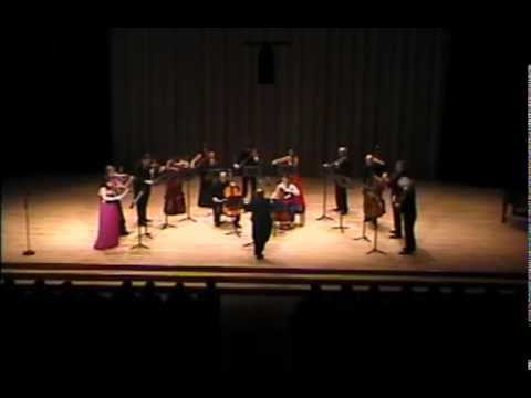 Dvorak Serenade for Strings movement 3