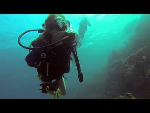 GoPro Adventure Travel - Djibouti & Whale Sharks