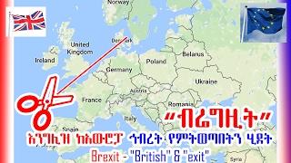 """""""ብሬግዚት"""" እንግሊዝ ከአውሮፓ ኅብረት የምትወጣበትን ሂደት Brexit British and exit - VOA"""