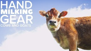 BEST HAND MILKING GEAR for a COW or GOAT (complete list)