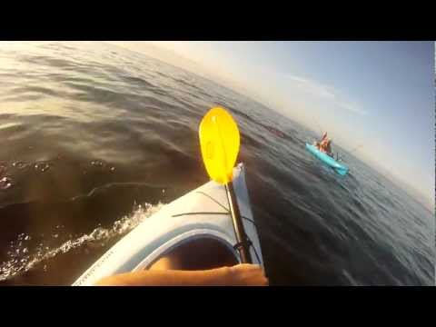 GoPro Kayak Fishing - Ron Catching A Striped Bass In The Long Island Sound