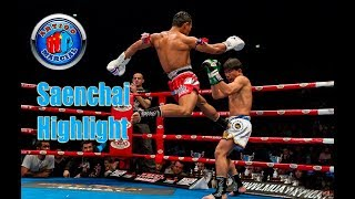 👊Saenchai Highlight